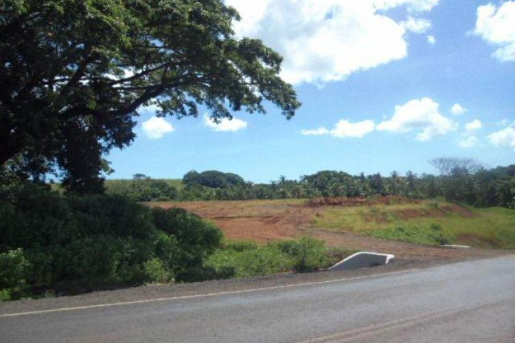 255 acres of freehold agriculture property with ocean view