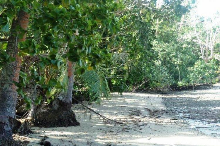 5 acres of beachfront land for sale in Fiji, South Pacific
