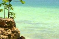 Land for sale in Vanuatu South Pacific Real Estate